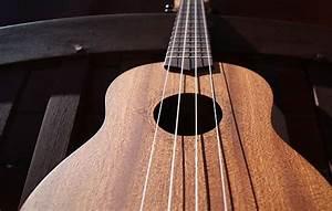 Best Ukulele Strings  Comparison  U0026 Reviews  The 2018 Guide