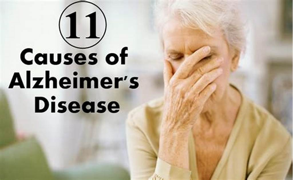 #Alzheimers #Disease #Causes #Symptoms #And #Treatments