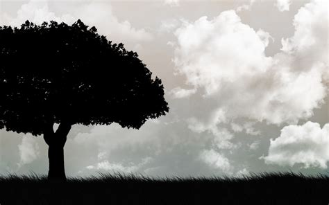 What are you looking for? Dark trees HD Wallpapers - wallpaper202