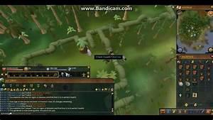 Runescape 3  Complete Tree Farming Guide