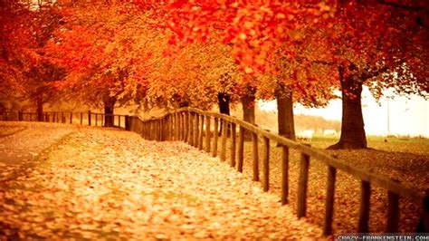 Autumn Fall Desktop Backgrounds by Autumn Pictures For Desktop Backgrounds 183 Wallpapertag