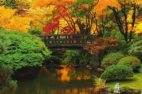 missing  portland japanese garden  fall winter