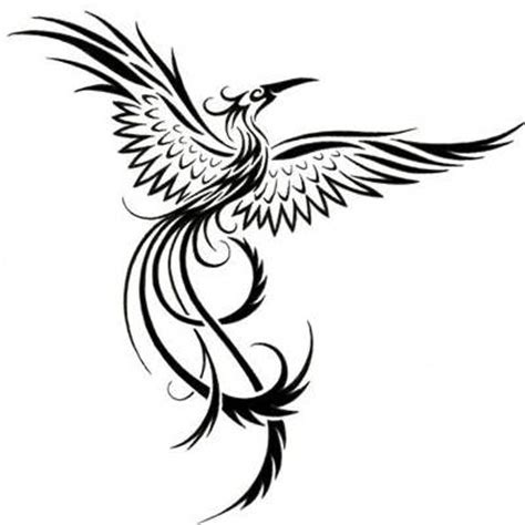 Images Of Tribal Phoenix Tattoo Designs Color Golfclub