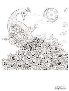 Free Printable Peacock Coloring Pages Adult