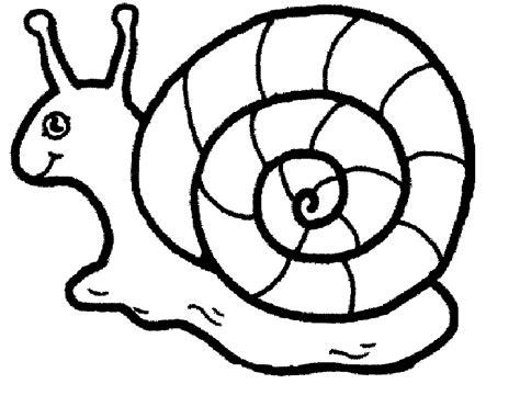 Kleurplaat Turbo Slak by Snailcolouringpages Madaboutsnails