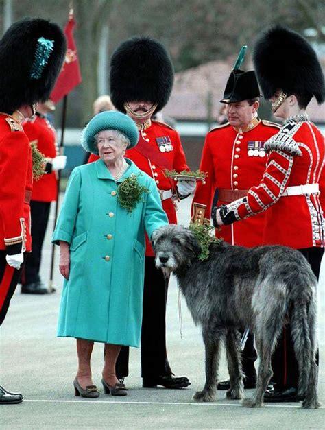 victoria catherine  royals und ihre tierischen