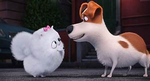 Animated Dog Movies