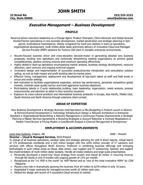Resume Executive Summary Exle by Pin By Resumetemplates101 On Best Executive Resume