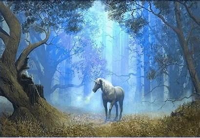 Licorne Fabelwesen Glitter Licornes Dans Einhorn Gifs