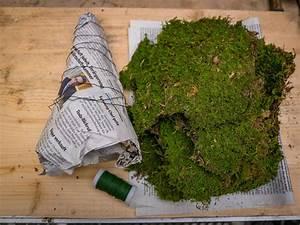 Basteln Mit Moos : moosbaum basteln und dekorieren ~ Watch28wear.com Haus und Dekorationen