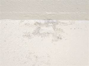 Mold on bathroom walls ideas mold mildew bathroom walls for Mildew on walls in bathroom