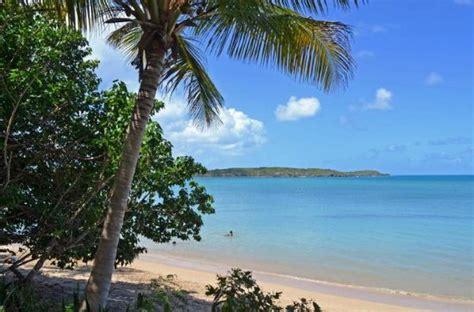 Best Catamaran Tour In Puerto Rico by The 10 Best San Juan Scuba Snorkeling Activities With