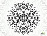 Coloring Complex Pages Flower Mandala Printable Sheets Geometric Dragon Adults Colouring Adult Getdrawings Getcolorings Books sketch template