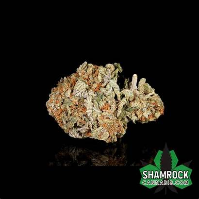 Kush Pink Cannabis Edibles Indica Sativa Topicals