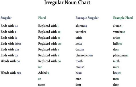 How Do You Spell Resume Plural by Plural And Singular Nouns Worksheet Abitlikethis
