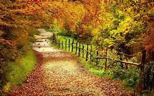 Bilder Herbst Kostenlos : download bilder f r das handy landschaft roads herbst bl tter kostenlos 15641 ~ Somuchworld.com Haus und Dekorationen