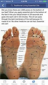 Best 25  Foot Massage Diagram Ideas On Pinterest