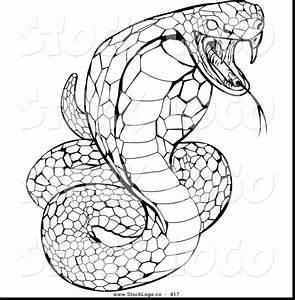 Python Black Mamba Coloring Pages Print Coloring