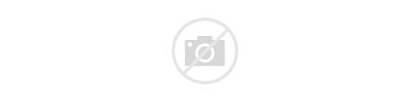 Shark Hungry Roblox Ocean Games Ipad Estimates