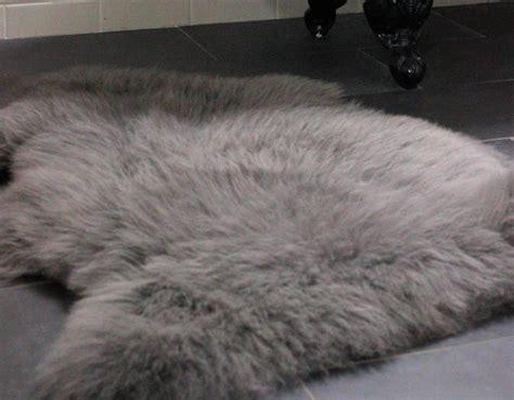 grey sheepskin rug dunelm grey sheepskin rug roselawnlutheran