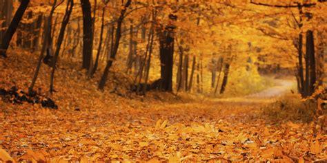 Daily Meditation: October | HuffPost
