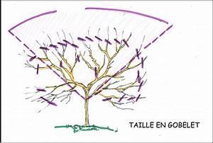 Comment Tailler Un Pommier : tailler le cerisier ~ Dode.kayakingforconservation.com Idées de Décoration