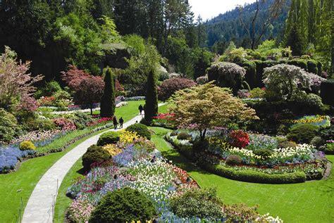 pictures of butchart gardens beautiful butchart gardens a traveller info