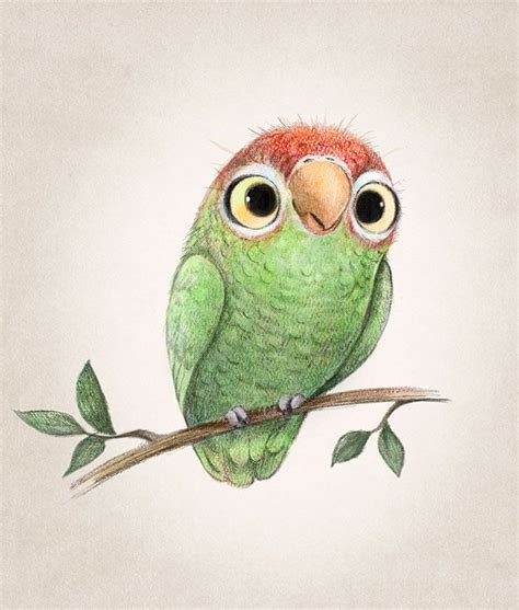 cute animal illustration ideas  pinterest