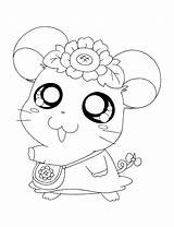 Coloring Pages Hamtaro Hamster Cute Google Print Schattige Kleurplaten Ever Printable Colouring Diertjes Bambam Bear Paddington Printables 출처 Nl sketch template