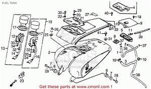 1986 Honda Shadow Vt1100 Wiring Diagram Charliediagram Ilsolitariothemovie It