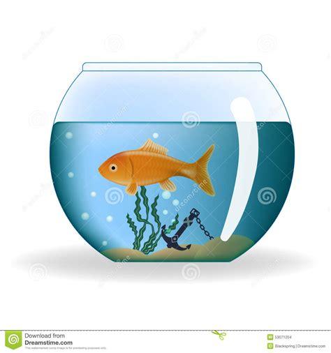 poisson dans l aquarium rond illustration de vecteur image 53071204