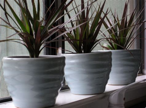 Window Sill Plant Pots by 28 Window Sill Plant Pots 4 Mexican Terra