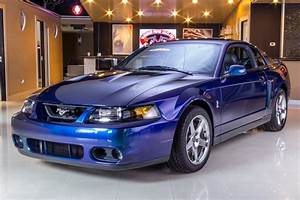 2004 Ford Mustang   Classic Cars for Sale Michigan: Muscle & Old Cars   Vanguard Motor Sales