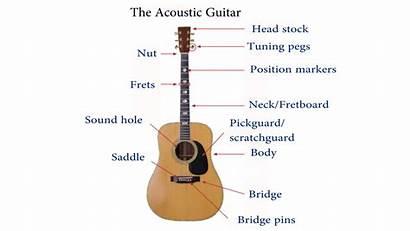 Guitar Beginners Lessons Step Diagram Parts
