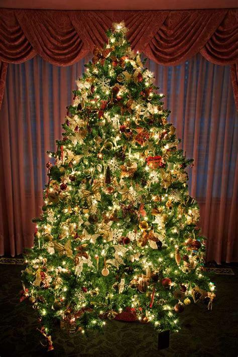 au 223 enbeleuchtung weihnachtsbaum bestseller shop
