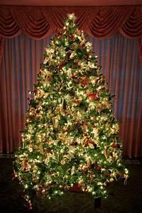 Lichterkette Tannenbaum Innen : 50er led weihnachtsbaum lichterkette kerzenlichterkette creme innen smash ~ Frokenaadalensverden.com Haus und Dekorationen