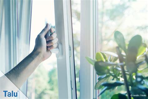 Fensterrahmen Reinigen Weiß by Fensterrahmen Reinigen Anleitung F 252 R Holz Kunststoff