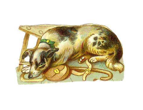 antique images vintage animal graphic dog clip art