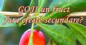 Fructe goji forum