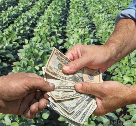 Agricultural Economics Careers