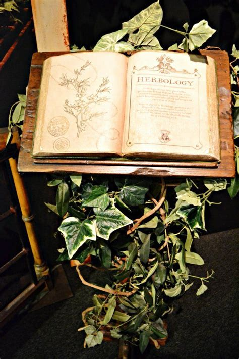 herbology book herbology witchcraft pinterest