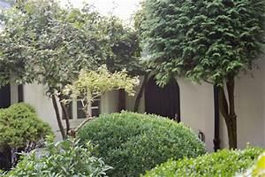 Sichtschutz Durch Pflanzen : gartenblog geniesser garten sichtschutz im garten teil 2 ~ Sanjose-hotels-ca.com Haus und Dekorationen