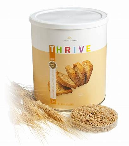 Thrive Wheat Hard Recipes Storage Winter Into