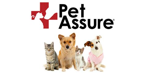 Use our comparison site, find out which insurance plan suits your pet the best & save! Pet Insurance for Pre-Existing Conditions USA - Pitbulls Care