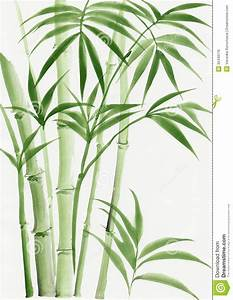 Watercolor Painting Of Palm Bamboo Royalty Free Stock ...