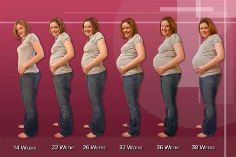 7 Tanda Wanita Hamil How Soon Do You Start Showing When Pregnant