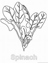 HD wallpapers coloring pages leafy vegetables high-resolution ...