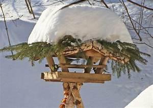 Vogelfutter Selber Machen Tannenzapfen : bild 5 vogelfutter selber machen feines im vogelh uschen ~ Lizthompson.info Haus und Dekorationen