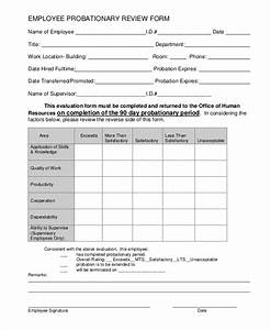 sample employee review form 7 examples in pdf word With probation meeting template