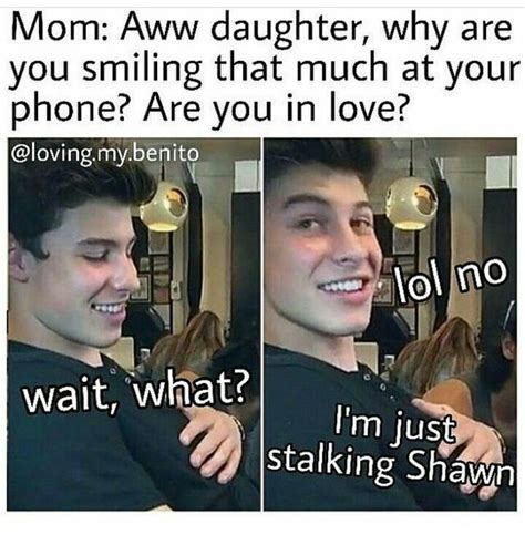 Shawn Meme - 1411 best images about shawn mendes